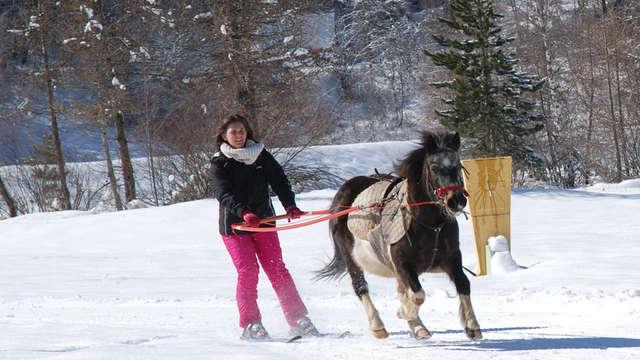 Ski joëring - Les Écuries des Écrins