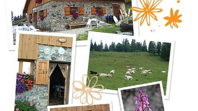 Gîte d'Alpage Le Pré du Molard