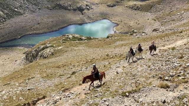Escursioni a cavallo -  Horse and Ventures