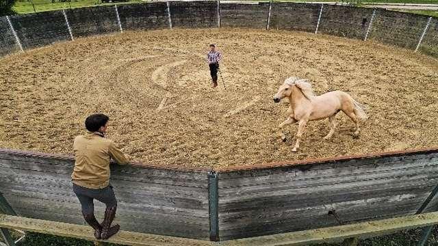 A cheval en montagne - Initiation à l'éthologie