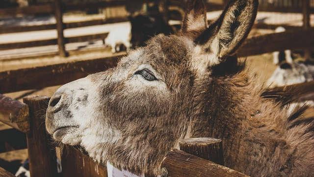 Ferme animalière d'Auriol