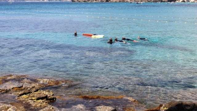 Sentier sous-marin du Domaine du Rayol, le jardin des Méditerranées