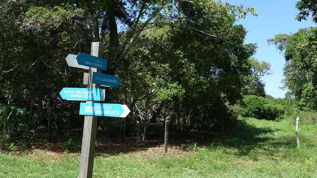 Sentier pédestre des Géants
