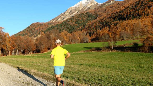 Trail - Himal