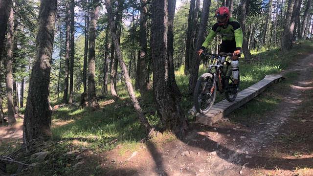 Will E Bike : VTT de descente