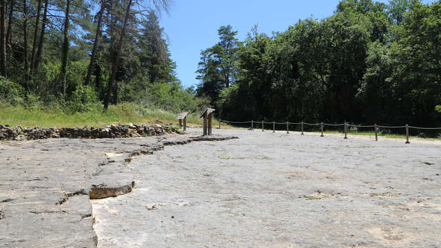 Sur la piste des Dinosaures à Villette... Sur la trace des Dinos en Revermont