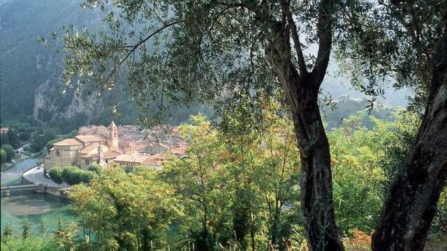 Meublé de tourisme La Source du Mont
