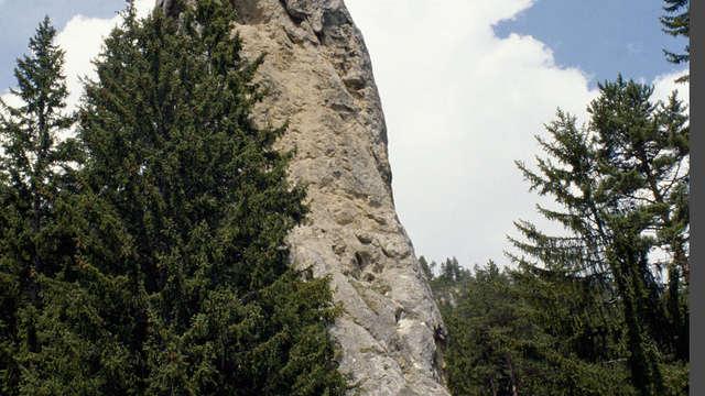 Rencontre sur sentiers ou stand de découverte avec les gardes-moniteurs du  Parc national de la Vanoise