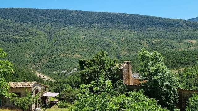 Le hameau des Colettes