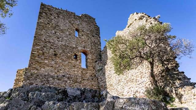 Schloss von Grimaud