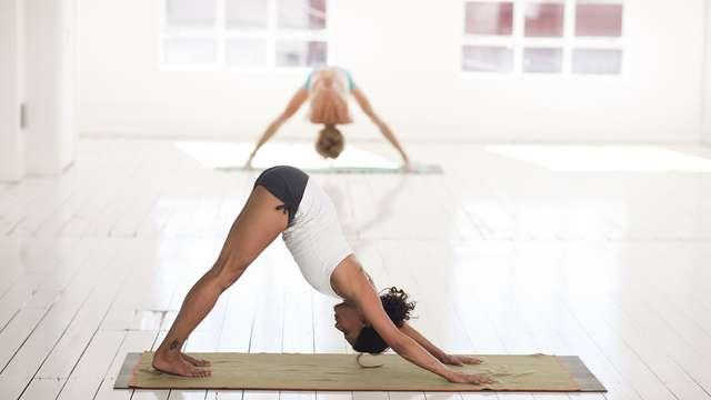 Natha Yoga adultes