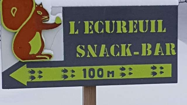 L'écureuil (A EMPORTER)