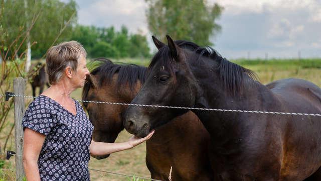 Balade à cheval avec l'AFH