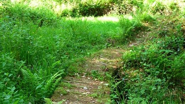 Randonnée sur Marsac par l'Association les Chemins de Fursac