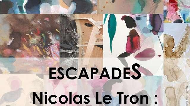Exposition de Nicolas le Tron