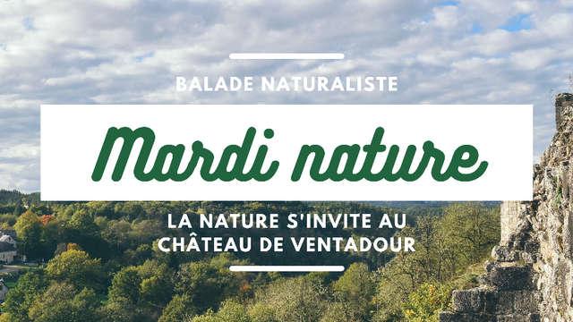 ANNULÉ - La nature s'invite au château de Ventadour