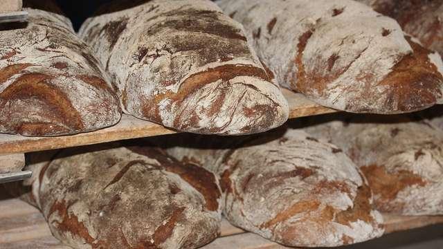 Boulangerie au champ du pain