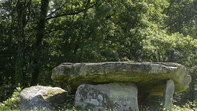 Dolmen et menhir de Ménardeix