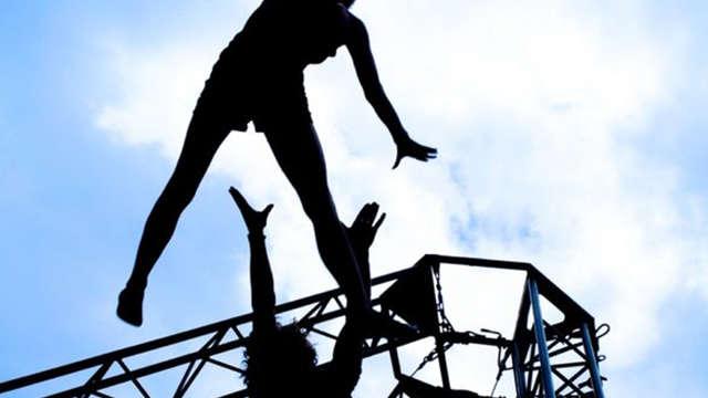 : L'ironie d'un saut, La Cie Sid
