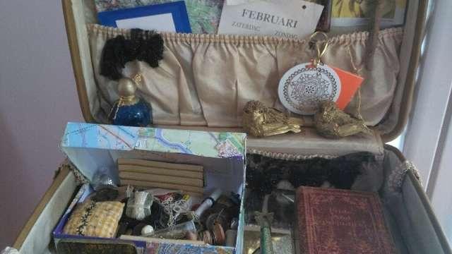 Cabinets de curiosité, rêves et bizarreries