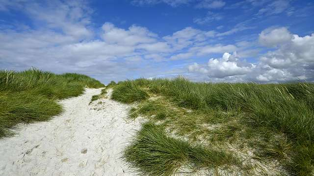 Dunes Sainte-Marguerite