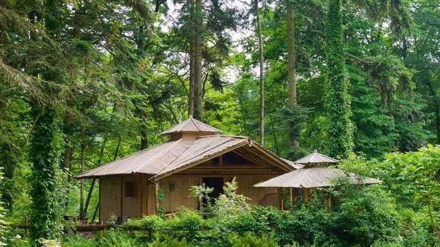 Cabane Bambou du camping d'Aleth