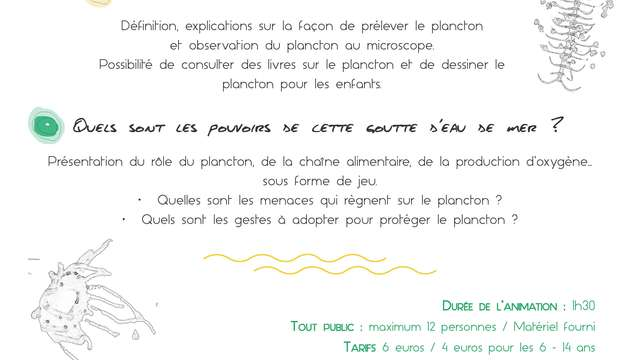 Animation plancton