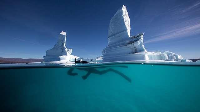 Projection - les Harmonies invisibles ou la Quête du Narval