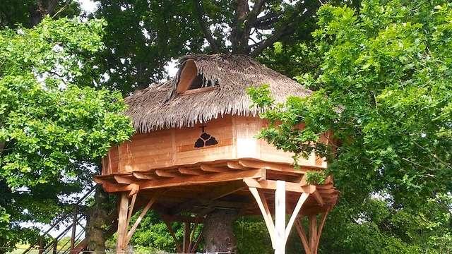 Cabane de Brocéliande