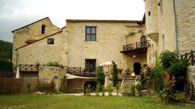 Le Château De St Chamarand