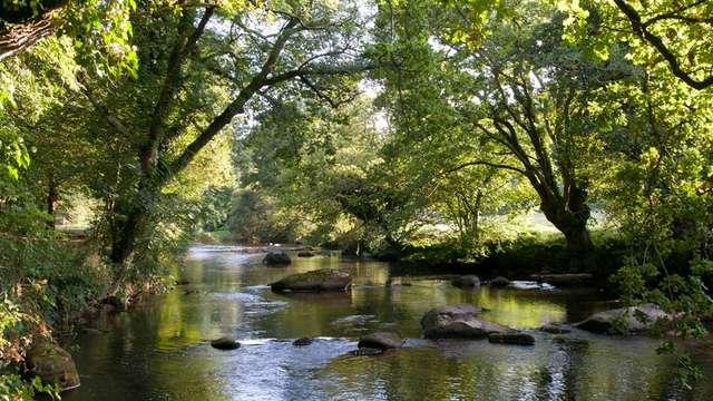 Vallée du Léguer - Rivière Sauvage