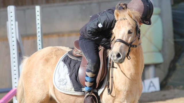 Centre Equestre du Bois Gérard
