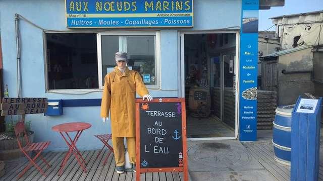 Aux Nœuds Marins - Producteur d'huîtres - Antoine KROOCKMANN