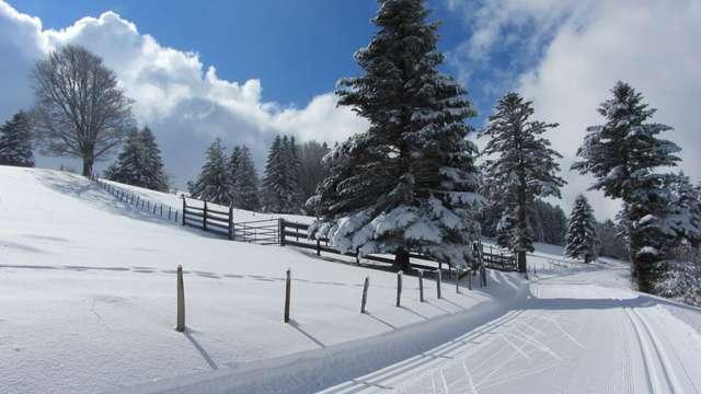 Ski de fond à la Croisette-piste rouge-Les alpages