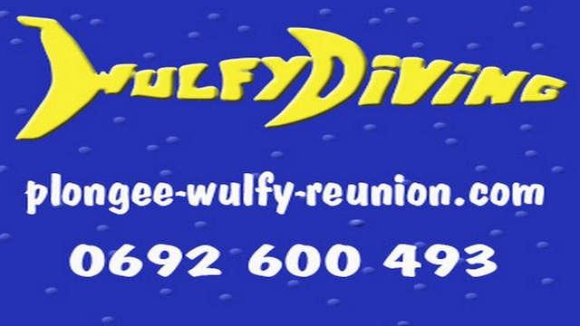 Wulfy Diving