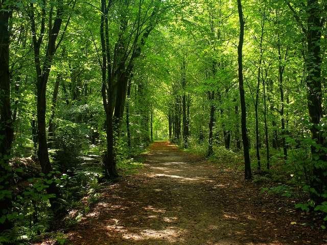 Circuit de randonnée : Petites rues et vieux chemins