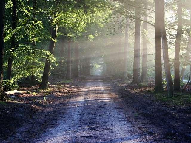 Circuit de randonnée : Histoires et Légendes