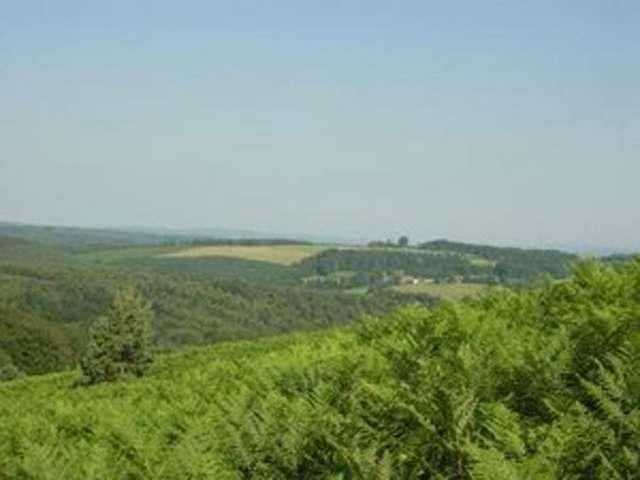Sentier d'interprétation des landes de Gioux