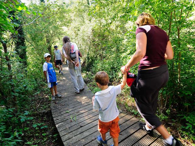 Réserve Naturelle Régionale du Marais de Bonnefont