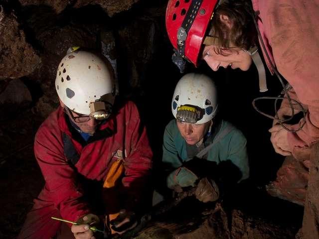 La microfaune souterraine des Causses du Quercy / Veillée conférence
