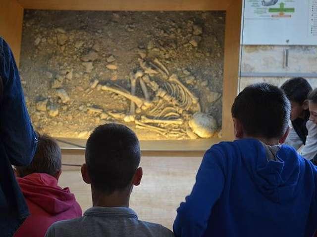 Visite Guidée du Musée de l'Homme de Neandertal