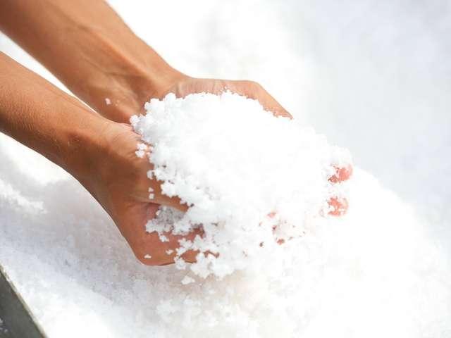 Le sel de Salies-de-Béarn