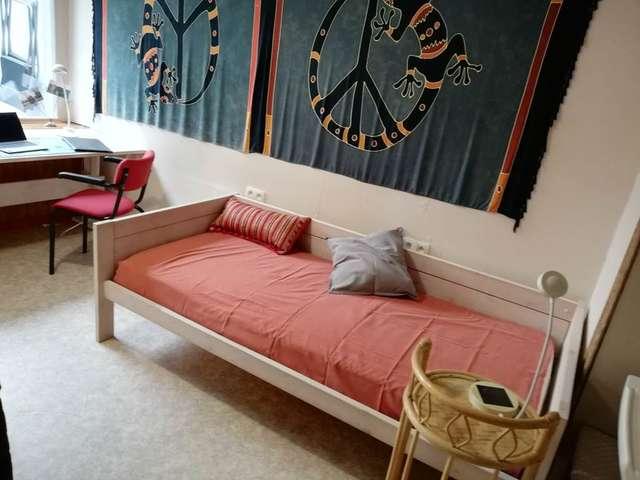 Voltaire, logement meublé