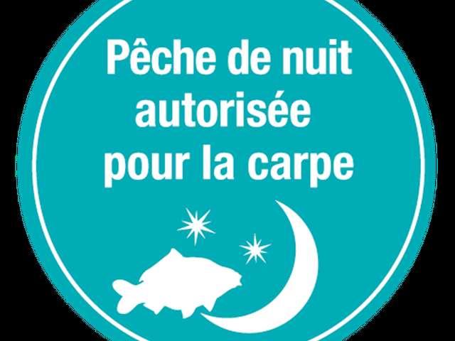 Parcours de pêche nocturne de la carpe en Tarn et Garonne
