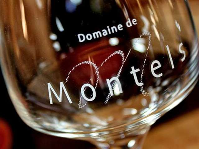 Le Domaine de Montels