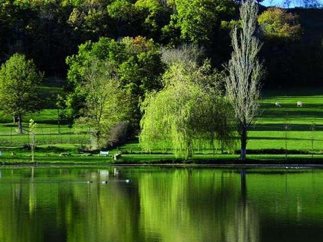 Lac des Bouzigues