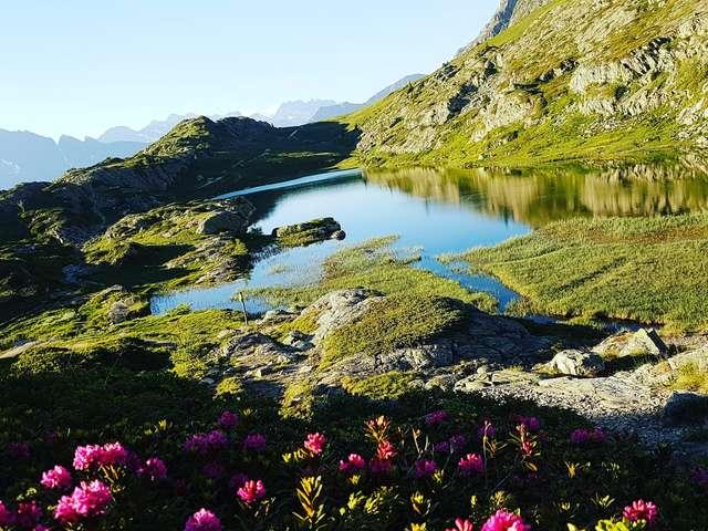 Découverte des lacs Carrelet et Faucille - Espace naturel sensible