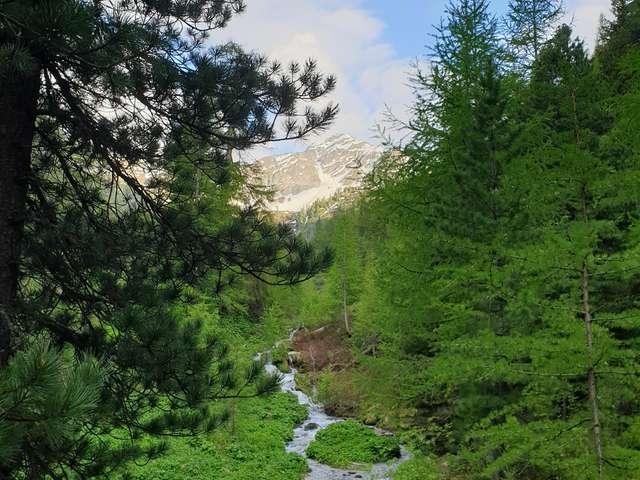 Petit tour du Vallon d'Arbi