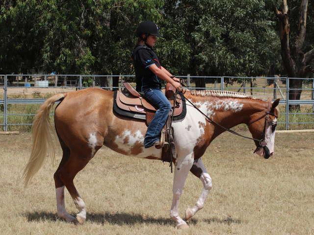 Lasbleiz Western Training