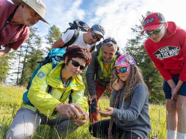 Col du Viallet : un sommet pour toute la famille